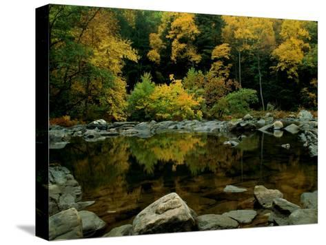 An Autumn View of Calf Pasture River-Medford Taylor-Stretched Canvas Print