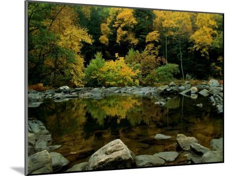 An Autumn View of Calf Pasture River-Medford Taylor-Mounted Photographic Print