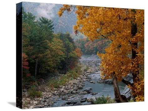 Autumn View--Stretched Canvas Print