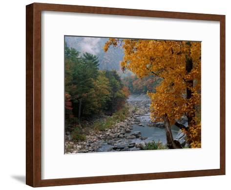 Autumn View--Framed Art Print