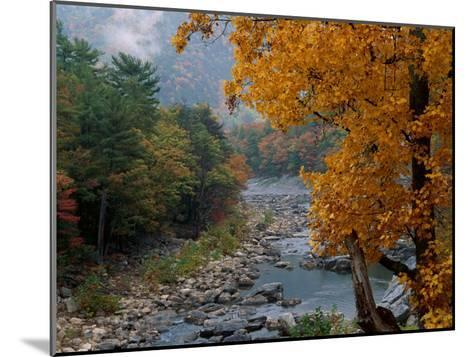 Autumn View--Mounted Photographic Print