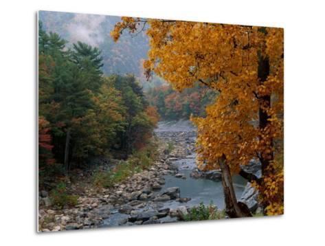 Autumn View--Metal Print