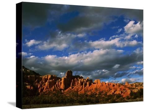 Warm Sunlight Washes over the Landscape of Cliffs in Utah-Barry Tessman-Stretched Canvas Print