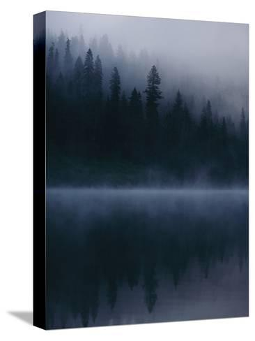 Scenic View Near Mount Shasta-Michael Nichols-Stretched Canvas Print