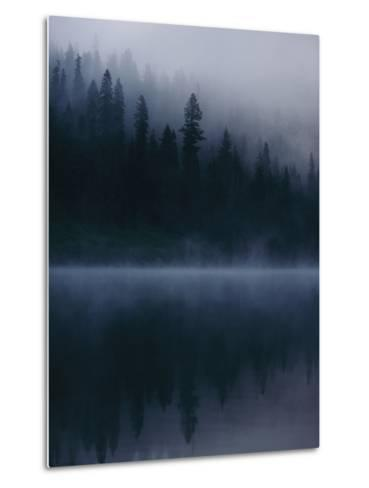 Scenic View Near Mount Shasta-Michael Nichols-Metal Print