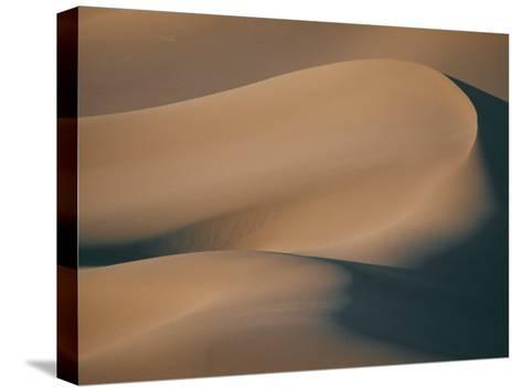 A Close View of Sand Dunes-Bill Curtsinger-Stretched Canvas Print