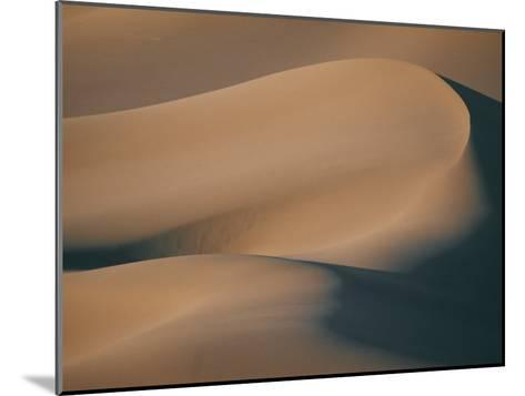 A Close View of Sand Dunes-Bill Curtsinger-Mounted Photographic Print