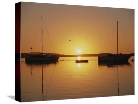 Sailboats Silhouetted at Sunset on Morro Bay-Rich Reid-Stretched Canvas Print