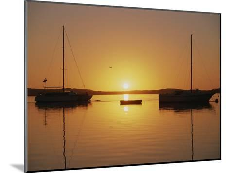 Sailboats Silhouetted at Sunset on Morro Bay-Rich Reid-Mounted Photographic Print