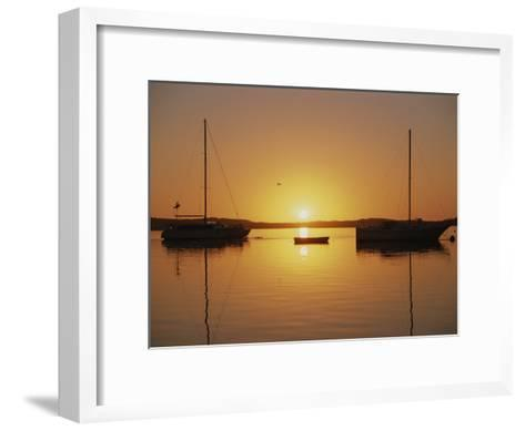 Sailboats Silhouetted at Sunset on Morro Bay-Rich Reid-Framed Art Print