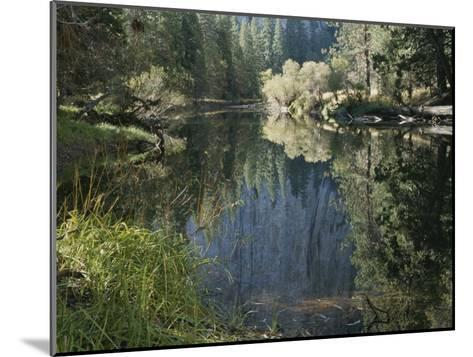Autumn View Along the Merced River-Marc Moritsch-Mounted Photographic Print