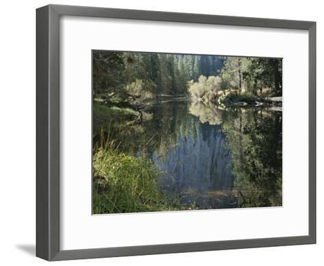 Autumn View Along the Merced River-Marc Moritsch-Framed Art Print