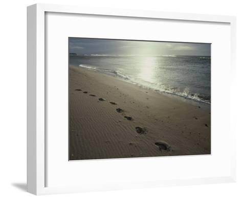 Footprints in the Sand on a Beach-Todd Gipstein-Framed Art Print
