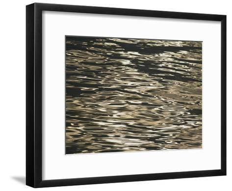 Sunlight Reflects off the Rippling Water-Michael Melford-Framed Art Print