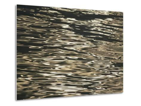 Sunlight Reflects off the Rippling Water-Michael Melford-Metal Print