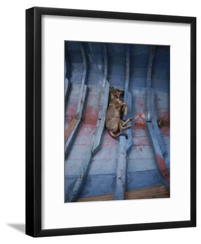 A Village Dog Naps in the Bottom of a Cat Boat-Bill Curtsinger-Framed Art Print