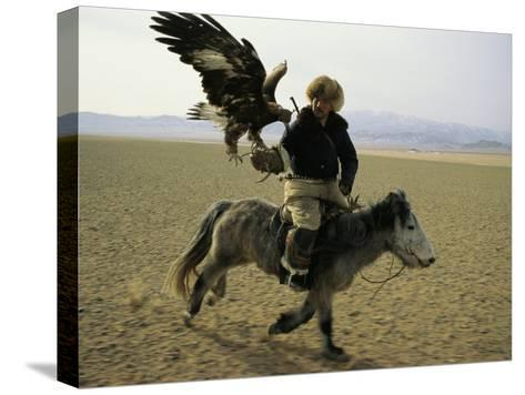 A Mongolian Eagle Hunter in Kazahkstan-Ed George-Stretched Canvas Print