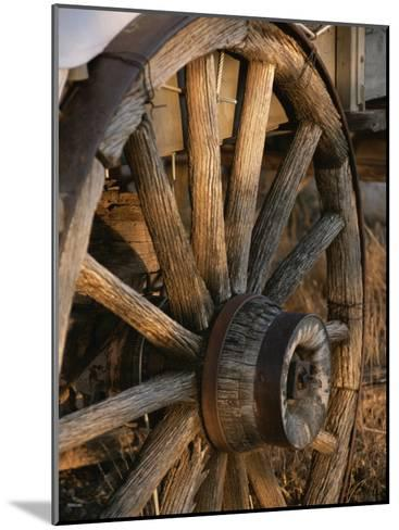 Wagon Wheel on Covered Wagon at Bar 10 Ranch Near Grand Canyon-Todd Gipstein-Mounted Photographic Print