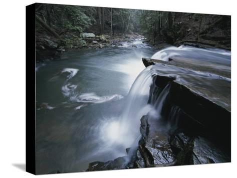 A Waterfall on Big Fiery Gizzard Creek Swirls into a Pool-Stephen Alvarez-Stretched Canvas Print