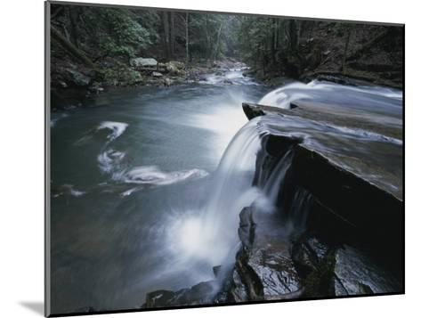 A Waterfall on Big Fiery Gizzard Creek Swirls into a Pool-Stephen Alvarez-Mounted Photographic Print