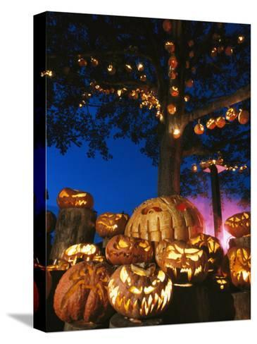 Grinning Lit Jack-O-Lanterns Surrounding and Filling a Tree-Richard Nowitz-Stretched Canvas Print