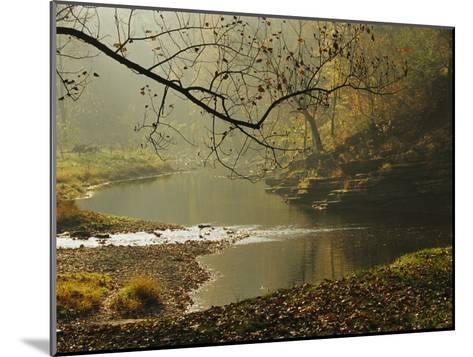 Creek Runs Through Blue Hole Campground-Raymond Gehman-Mounted Photographic Print