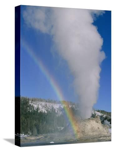 A Rainbow Forms During an Eruption of Castle Geyser-Norbert Rosing-Stretched Canvas Print