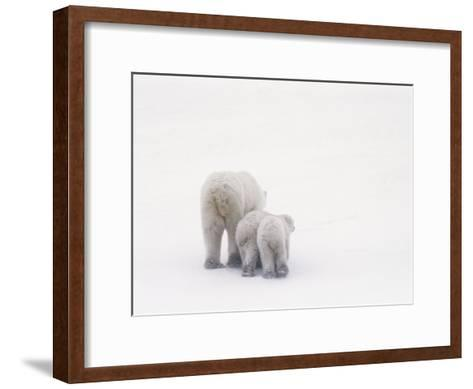 Rear View of a Polar Bear and Her Two Cubs-Norbert Rosing-Framed Art Print