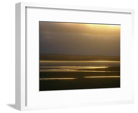 Marsh Ponds at Twilight-Norbert Rosing-Framed Art Print