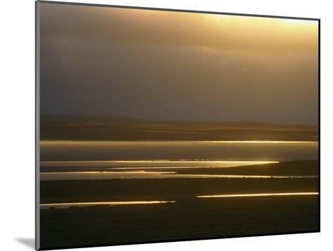 Marsh Ponds at Twilight-Norbert Rosing-Mounted Photographic Print
