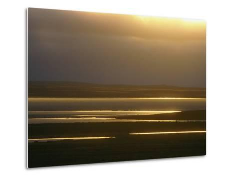 Marsh Ponds at Twilight-Norbert Rosing-Metal Print