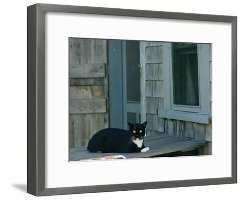 A Cat Sits on a Porch-James L^ Stanfield-Framed Art Print