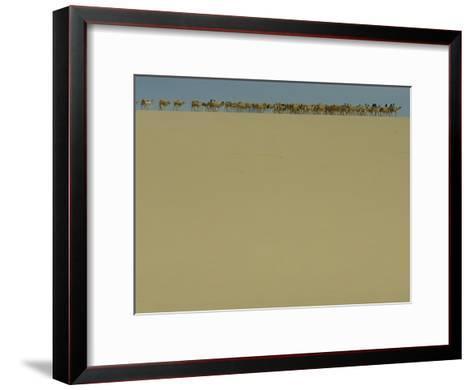 Salt Caravan Enroute to Agadez and Nigeria-James L^ Stanfield-Framed Art Print