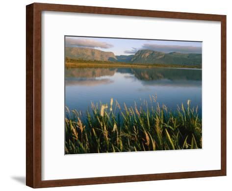 Grasses Grow Along the Edge of a Lake-Michael S^ Lewis-Framed Art Print