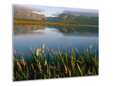 Grasses Grow Along the Edge of a Lake-Michael S^ Lewis-Metal Print