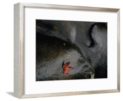 Close View of a River Sliding over Boulders-Randy Olson-Framed Art Print