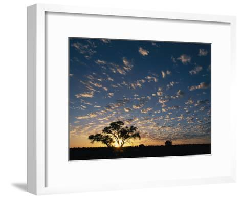 A Twilight View of a Lone Tree Silhouetted by the Setting Sun-Nicole Duplaix-Framed Art Print