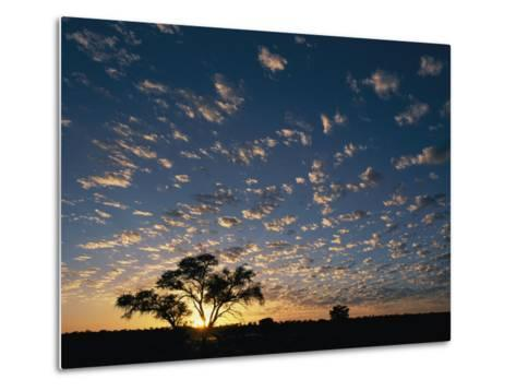 A Twilight View of a Lone Tree Silhouetted by the Setting Sun-Nicole Duplaix-Metal Print