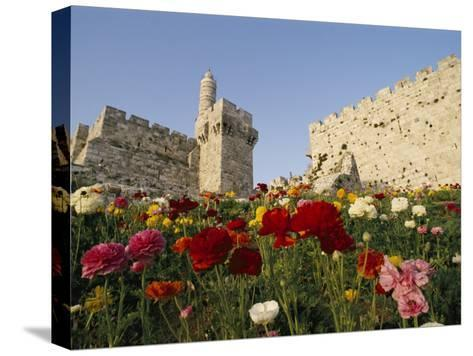 A View of Flowers Growing Outside a Castle-Richard Nowitz-Stretched Canvas Print
