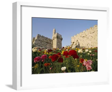 A View of Flowers Growing Outside a Castle-Richard Nowitz-Framed Art Print