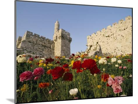 A View of Flowers Growing Outside a Castle-Richard Nowitz-Mounted Photographic Print