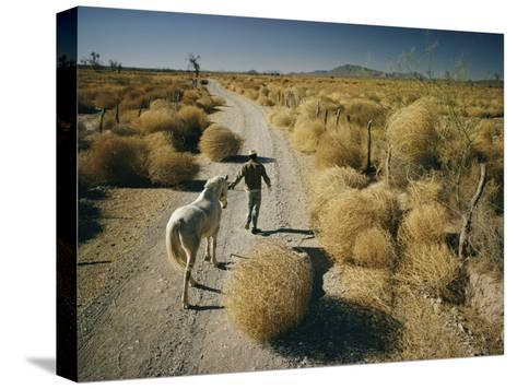 A Man Leads a Horse Down a Dirt Road-Walter Meayers Edwards-Stretched Canvas Print
