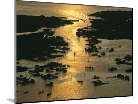 Aerial Shot, Tangier Island, Chesapeake Bay, Virginia-Skip Brown-Mounted Photographic Print