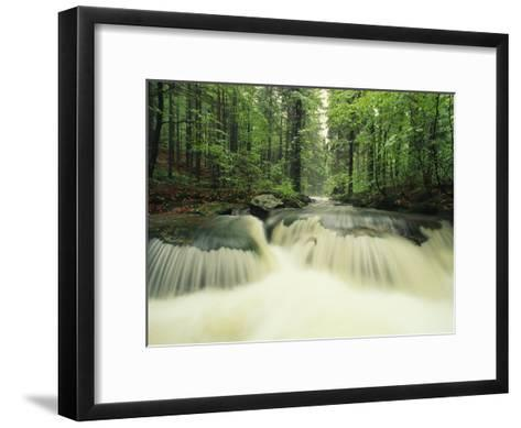 Waterfall Time Exposure, Bayerischer Wald National Park, Germany-Norbert Rosing-Framed Art Print