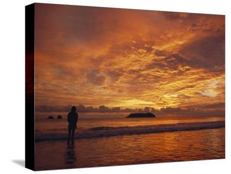 A Brilliant Orange Sunset on the Coast of Costa Rica-Tim Laman-Stretched Canvas Print