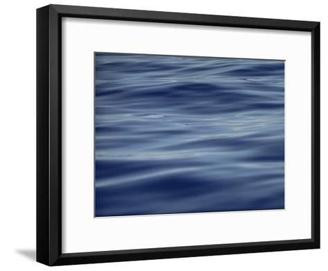 View of Calm Blue Water off the Coast of the Hawaiian Islands-Bill Curtsinger-Framed Art Print