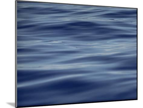 View of Calm Blue Water off the Coast of the Hawaiian Islands-Bill Curtsinger-Mounted Photographic Print