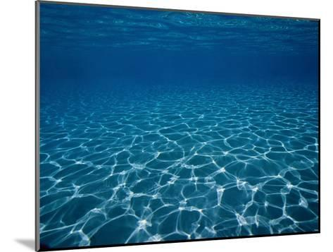 Sunlight Reflects on the Sea Floor Through Crystal Clear Blue Water-Raul Touzon-Mounted Photographic Print