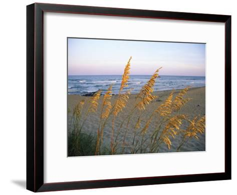 Beach Scene with Sea Oats-Steve Winter-Framed Art Print