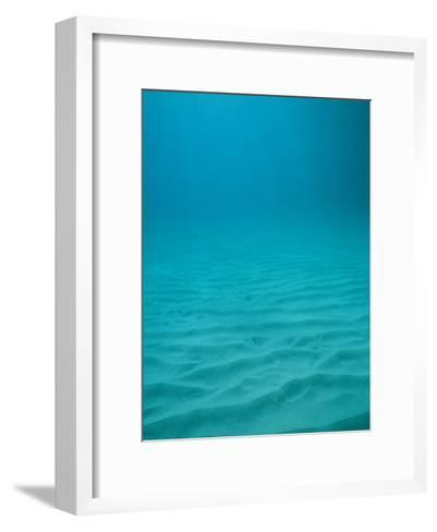 Underwater Shot of Clear Blue Water off of the Virgin Islands-Raul Touzon-Framed Art Print